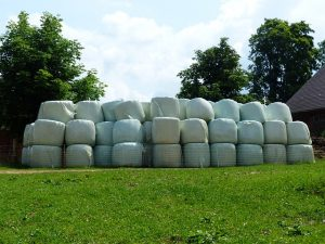 Stacks of wrapped hay bales