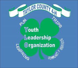 4-H Taylor County YLO logo
